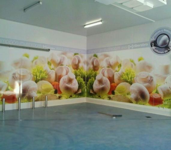 vinilos-decorativos-para-empresas